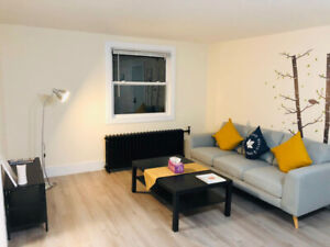 Downtown area Apartment for rent--New Renovation
