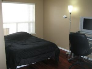1 bedroom, 1 full bathroom condo available for rent