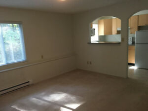 Bright, Spacious 1 bedroom basement suite for rent