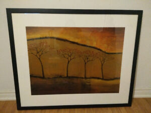 Beautiful Framed Pictures For Home or Office