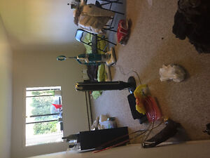 Large Room in 2 Bedroom downtown Apartment