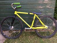Archie Wilkinson Junior Cycle Speedway Bike