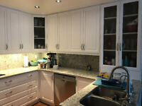 Kitchen Cabinets, Hand Rail, and/ or Furniture Refinishing