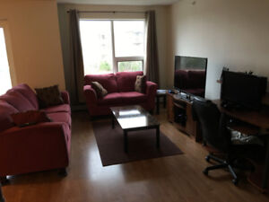 Furnished room in 3 bedroom available in Clayton Park now.