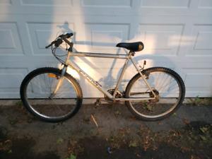 2 adult mountain bikes