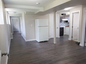 Brand new  2 or 3 bedroom bi-level basement for rent in south