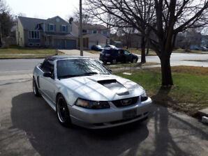 1999 Mustang gt 35th anniversary convertible and supercharged.