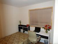*Beautiful rooms Belles chambres Metro Frontenac Ville Marie---6
