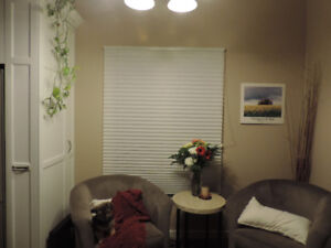 "1"" pleated cell blind beige"