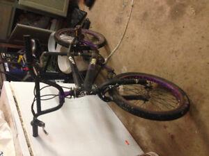 BMX bike for cheap! Need gone