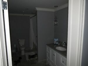 Need A Bathroom Make-Over? A New Bathroom In Basement ?
