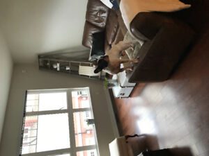 Seeking roommate for large townhouse $900