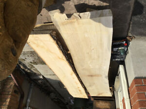 Live Edge Lumber For Sale  Ash and Poplar $100 each