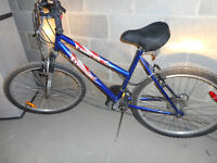 Raleigh Women's bike