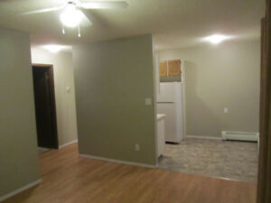 Oct 1st - 1 bdrm (MonthlyLease/PetsConsidered)NearDowntown