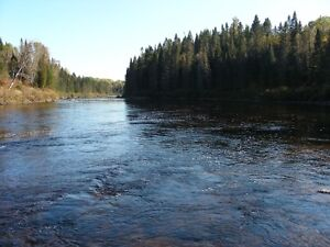 A vendre: Terrain borné rivière Valin $$$ RÉDUIT A 100,000 $ Saguenay Saguenay-Lac-Saint-Jean image 4