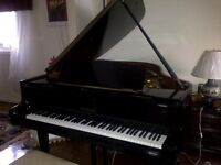 Private piano and theory lessons