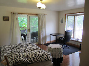 1 Bdrm-Suit Professional or Retiree-Share Modern Spacious House