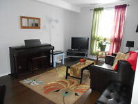 Furnished Basement Bachelor Suite for Rent near Clareview LRT
