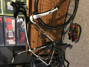 Specialized full carbon road bike 51cm