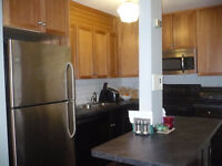 Modern 1-BR Semi-Furnished Condo for Rent in City Park - Dec. 1
