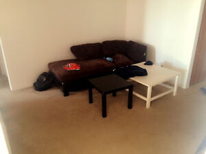 Room available in downtown, 180 Lees Avenue London Ontario image 6