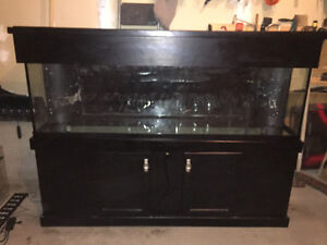 125 Gallon Reef Ready Aquarium and Accessories