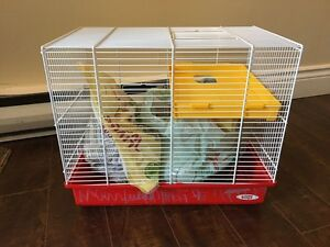 Cage and food
