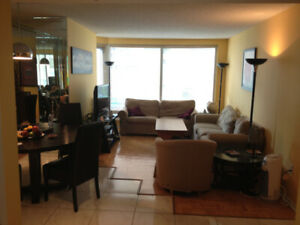 Beautiful 4.5 apartment Downtown Montreal for Rent