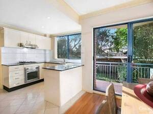 Modern attractive townhouse welcomes an Asian lady. Lane Cove Lane Cove Area Preview