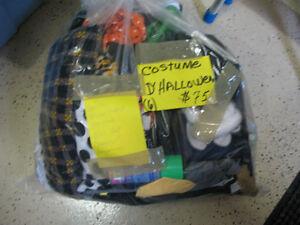 5 costumes d'Hallowen pour adulte Gatineau Ottawa / Gatineau Area image 4
