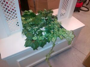 DECORATION FLOWER BOXES - PERFECT FOR WEDDING OR SPECIAL EVENT Kitchener / Waterloo Kitchener Area image 2