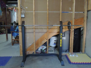 Adjustable Workout stand for Bench Press and Squat