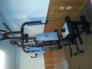 Northern Lights fitness equipment Kitchener / Waterloo Kitchener Area image 1