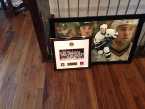 Hockey Collectors Pictures