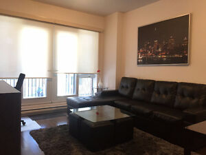 BRAND NEW 780sq/ft 1 Bedroom Condo For Rent in Plateau/Mcgill