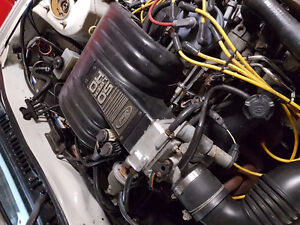 87 v8 302 h.o Foxbody Mustang and t5 transmission