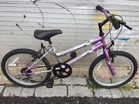 Universal Indigo girls mountain bike.