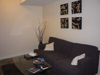 Beautiful New 1 Bed Basement Suite, Laun/Park/Cable Feb 15