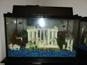 Fish tank for sale