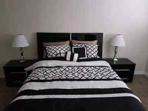 One room available for January 2017 Kitchener / Waterloo Kitchener Area image 5