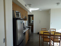 Full furnished+Clean+All new+2min Walk (C-trian,UofC,SAIT)