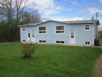 Amherst 1 bdrm apartment in quiet triplex, heat/lights included