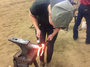 Farrier Services - Trims and variety of shoes