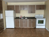 2 Bedroom Apt for Rent - No Damage Deposit Required