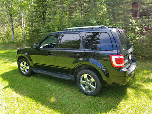 2010 Ford Escape Limited  MINT CONDITION $ 10,900.00