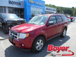 2009 Ford Escape XLT AWD