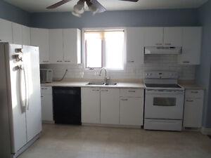3-Bedroom Main Floor Apartment Northside Downtown