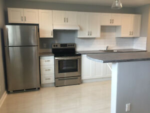 NEWLY RENOVATED- 2 BEDROOM APARTMENT IN SECURE BUILDING FOR RENT