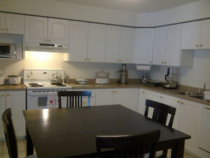 Luxury suite, central location, avail. Sept. 1 (one year lease).